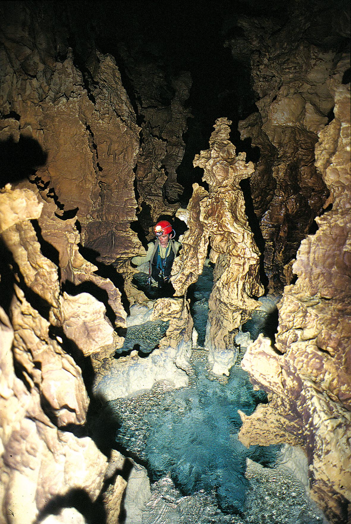 Cave A Vin Royan vercors - travel guide & hotel booking in vercors